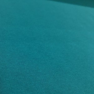 Fleece Back Sweatshirt Jersey - Aquamarine